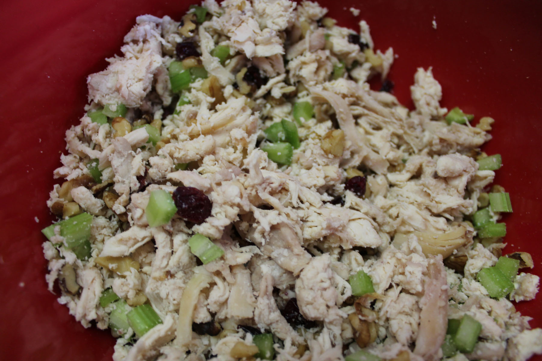 Chicken Salad (2)